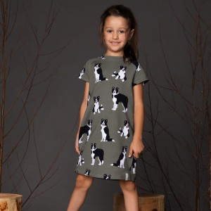Border Collie dress, khaki